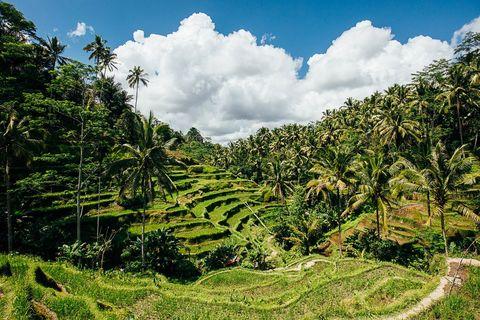 LE-160912-Urlaub-Bali-1818-min